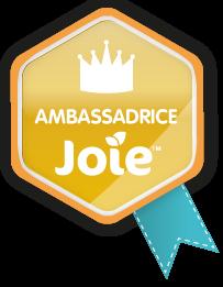 MACARON-AMBASSADEUR-JOIE